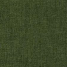270045 DW16189 257 Moss by Robert Allen
