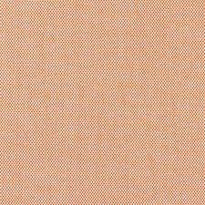 Mango Decorator Fabric by Scalamandre