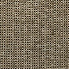 Cork Spa Texture Decorator Fabric by Kravet