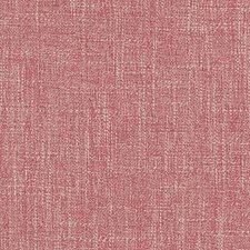 275257 SU16209 31 Coral by Robert Allen