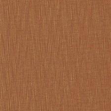 277837 DN15991 107 Terracotta by Robert Allen