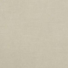 290261 32734 598 Camel by Robert Allen