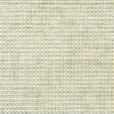 Mist Texture Decorator Fabric by Kravet