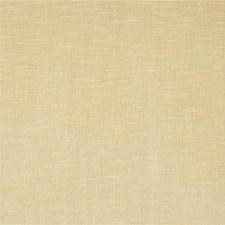 Beige Solid W Decorator Fabric by Kravet