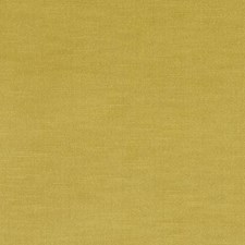 298560 190235H 258 Mustard by Robert Allen