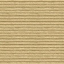 Sand Texture Decorator Fabric by Kravet