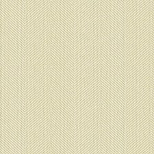 Pearl Chenille Decorator Fabric by Kravet