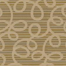 Inca Modern Decorator Fabric by Kravet