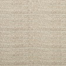 Driftwood Ethnic Decorator Fabric by Kravet