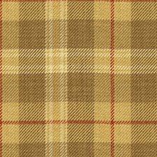 Saffron Check Decorator Fabric by Kravet