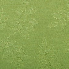 Grassland Decorator Fabric by Duralee