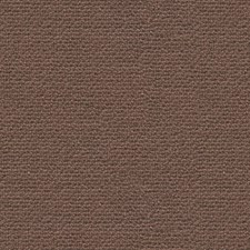 Root Solid Decorator Fabric by Kravet