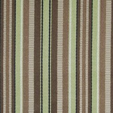 Earth Decorator Fabric by Duralee