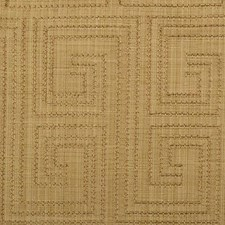Butterscotch Embroidery Decorator Fabric by Duralee