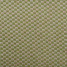 Kiwi/pink Decorator Fabric by Duralee