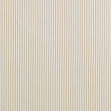 Amber Small Scale Decorator Fabric by Duralee