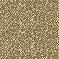 Falcon Dots Decorator Fabric by Kravet