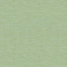 Light Green/Light Blue Solids Decorator Fabric by Kravet