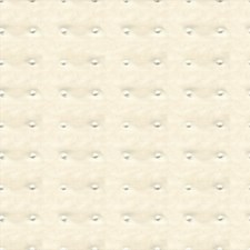 Whiteout Dots Decorator Fabric by Kravet