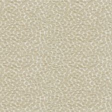 Pumice Dots Decorator Fabric by Kravet