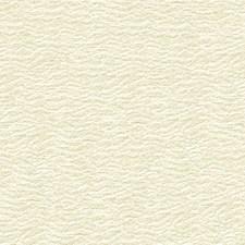 Lunar Solid W Decorator Fabric by Kravet