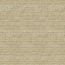 Beige/Grey Ethnic Decorator Fabric by Kravet