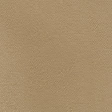 Khaki Solid Decorator Fabric by Fabricut