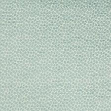 Light Blue/White Animal Skins Decorator Fabric by Kravet