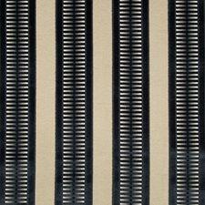 Ink Stripes Decorator Fabric by Kravet