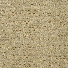 Camel/Beige Solids Decorator Fabric by Kravet