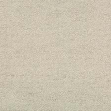 Light Grey/Silver Animal Skins Decorator Fabric by Kravet