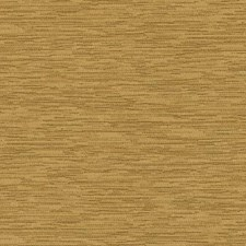 358270 DK61162 576 Marigold by Robert Allen