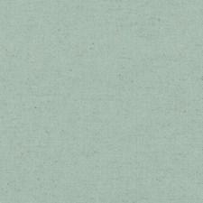 358664 DK61235 209 Mist by Robert Allen