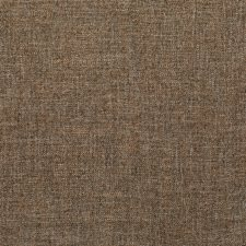 Vicuna Solid Decorator Fabric by Kravet