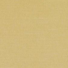 360526 DK61161 264 Goldenrod by Robert Allen
