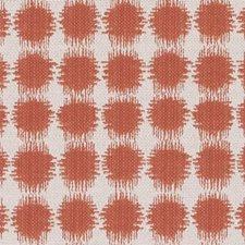 360979 DI61377 181 Red Pepper by Robert Allen