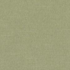 361557 DK61161 597 Grass by Robert Allen