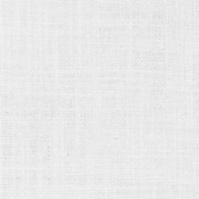 369568 DK61281 18 White by Robert Allen