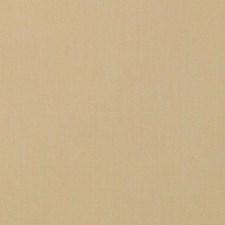 374987 DK61567 264 Goldenrod by Robert Allen