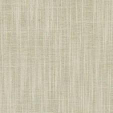 375672 DD61545 564 Bamboo by Robert Allen
