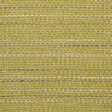 376231 15465 717 Lemongrass by Robert Allen