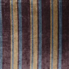 Dragonfly Stripes Decorator Fabric by Fabricut