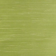 Muted Lime Decorator Fabric by B. Berger