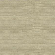 Silver/Metallic Metallic Decorator Fabric by Kravet