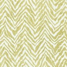 Grass Animal Skins Decorator Fabric by Duralee