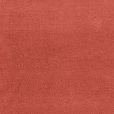 Crocus Decorator Fabric by Schumacher