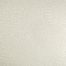 Ivory Botanical Decorator Fabric by Kravet