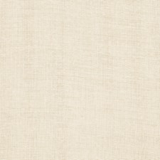 Champagne Texture Plain Decorator Fabric by Fabricut