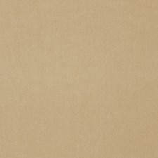 Raffia Solid Decorator Fabric by Stroheim