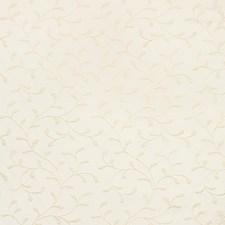 Ivory/White Botanical Decorator Fabric by Kravet